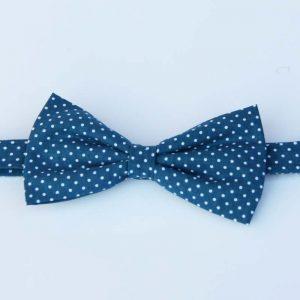 Pajarita azul verdosa