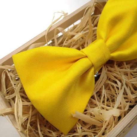 Pajarita Amarillo fuerte
