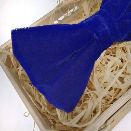 Pajarita de terciopelo azul eléctrico